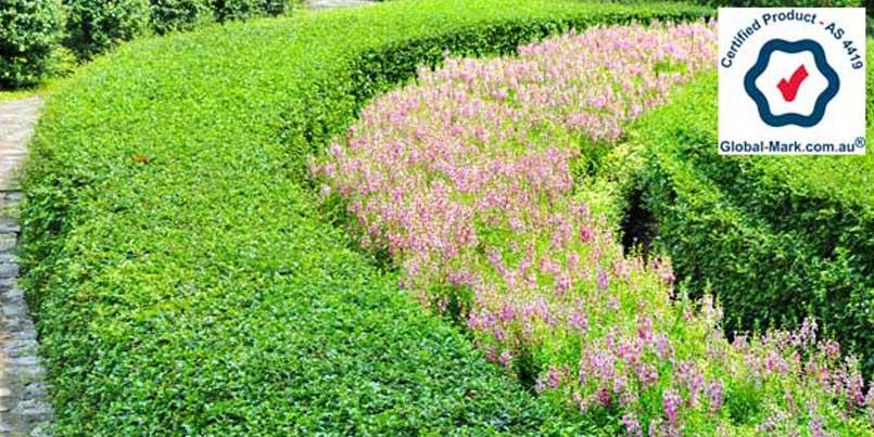Soils for Mass Planting