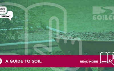 Did You Know? A Guide To Soil