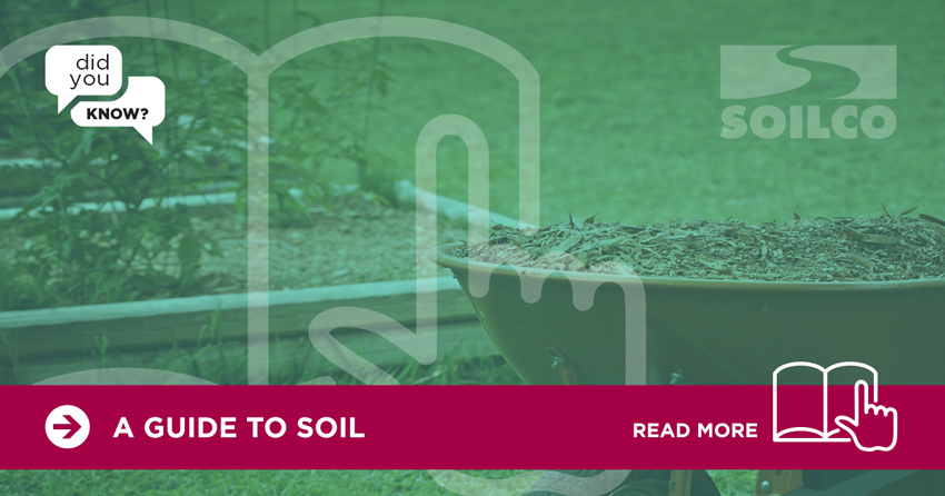 SOILCO-Did-You-Know-A-Guide-to-Soil